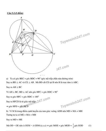 Goi y dap an mon Toan thi lop 10 TP.HCM - Anh 5