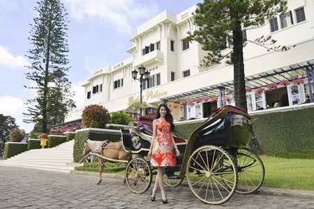 Nguoi dep HHHV Viet Nam tham du le ruoc tuong vua Bao Dai, Hoang hau Nam Phuong - Anh 11