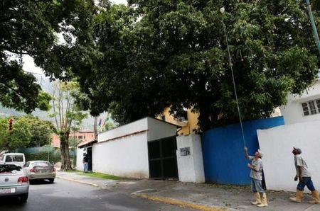 Mua xoai cuu doi o Venezuela - Anh 2