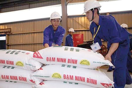 Dam Ninh Binh: Tuong lai am dam - Anh 1
