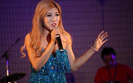 200.000 khach den le hoi Viet Nam tai Nhat Ban - Anh 2