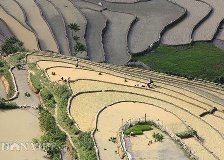 'Da mat' voi ruong bac thang dep long lay mua nuoc do o Mu Cang Chai - Anh 9