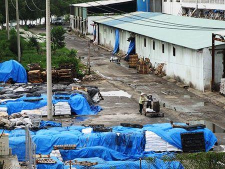 Ngu dan Canh Duong de nghi dung hoat dong cua Formosa - Anh 13