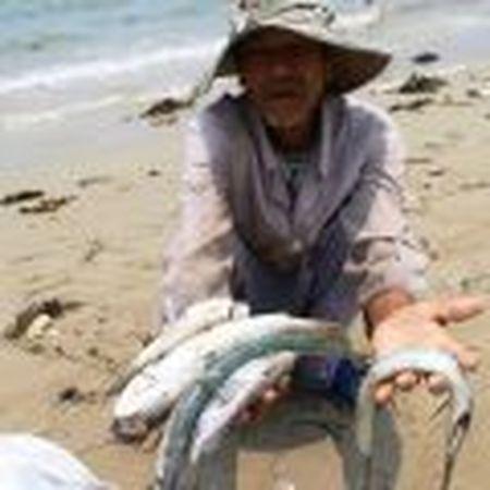 Ngu dan Canh Duong de nghi dung hoat dong cua Formosa - Anh 6
