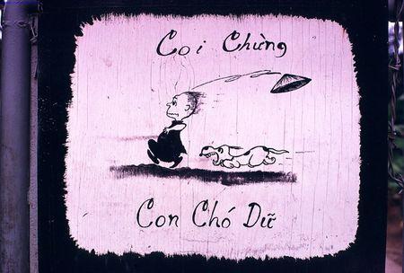 Goc anh la ve mien Nam Viet Nam nam 1968 - Anh 3