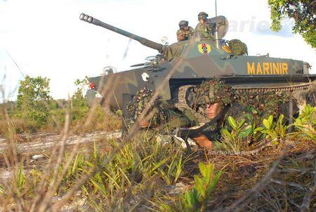 Viet Nam chon Nga hay Israel nang cap tang PT-76B? - Anh 5