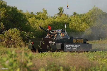 Viet Nam chon Nga hay Israel nang cap tang PT-76B? - Anh 9