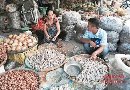 Nong san Trung Quoc tran lan tai cho dau moi Vinh - Anh 2