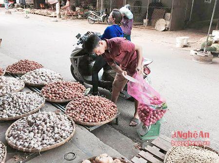 Nong san Trung Quoc tran lan tai cho dau moi Vinh - Anh 5
