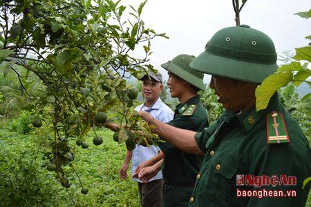BDBP Nghe An: Bao ve an toan he thong duong bien - Anh 2