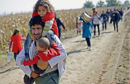 UNICEF canh bao 50% so nguoi ti nan la tre em - Anh 1