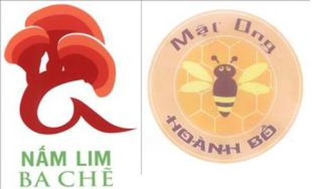 Quang Ninh xep thu 10/64 tinh, thanh pho ve so van bang bao ho - Anh 1