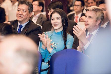 Ly Nha Ky mac ao dai dien kien Tong thong Phap - Anh 4