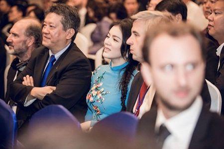 Ly Nha Ky mac ao dai dien kien Tong thong Phap - Anh 5