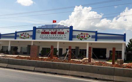 Vua Thanh long Hong Que Hoa lan chiem hanh lang QL1 - Anh 1