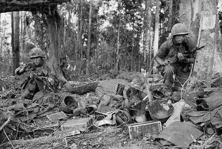 Linh My o Viet Nam va tham hoa mang ten AR-15 - Anh 5