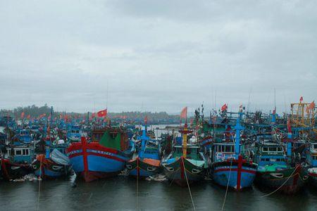 Quang Ngai: Dang tren duong vao ben tranh bao, 1 tau ca bi song danh chim - Anh 1
