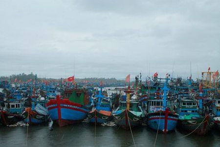 Quang Ngai: Dang tren duong vao ben tranh bao, 1 tau ca bi song danh chim - Anh 2