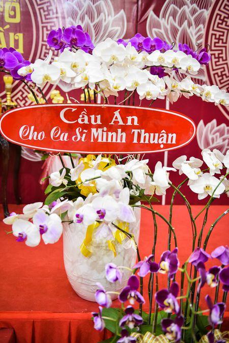 Ca si Dong Dao cung 100 nguoi cau an cho Minh Thuan - Anh 9