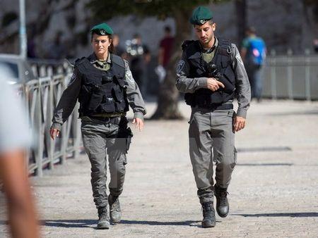 Palestine: Israel ngan hoi nghi hoa binh quoc te tai Paris - Anh 1