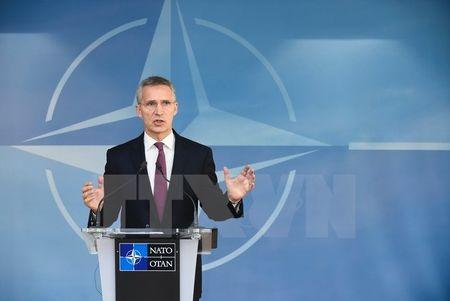 Sputnik: NATO dieu them quan, rao riet chuan bi cuoc chien voi Nga - Anh 1