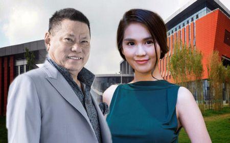 Tai san ty phu Hoang Kieu tang 400 trieu USD khi yeu Ngoc Trinh - Anh 1
