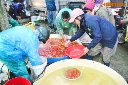 Cho ca lon nhat Ha Noi tap nap truoc ngay cung ong Cong ong Tao - Anh 13