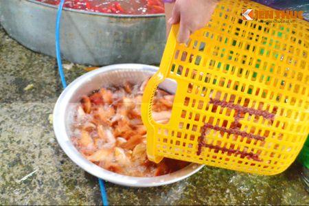 Cho ca lon nhat Ha Noi tap nap truoc ngay cung ong Cong ong Tao - Anh 4