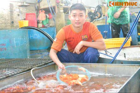 Cho ca lon nhat Ha Noi tap nap truoc ngay cung ong Cong ong Tao - Anh 7