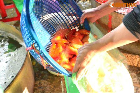 Cho ca lon nhat Ha Noi tap nap truoc ngay cung ong Cong ong Tao - Anh 9