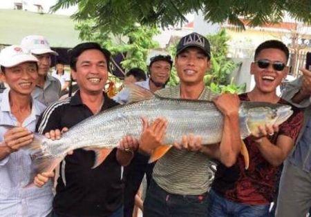 Xon xao hang loat thuy quai quy hiem dinh luoi o Viet Nam - Anh 10
