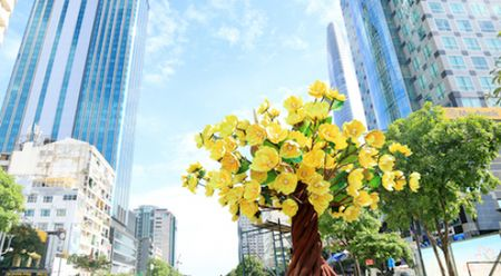Duong hoa Nguyen Hue da hoan thanh 90% - Anh 1