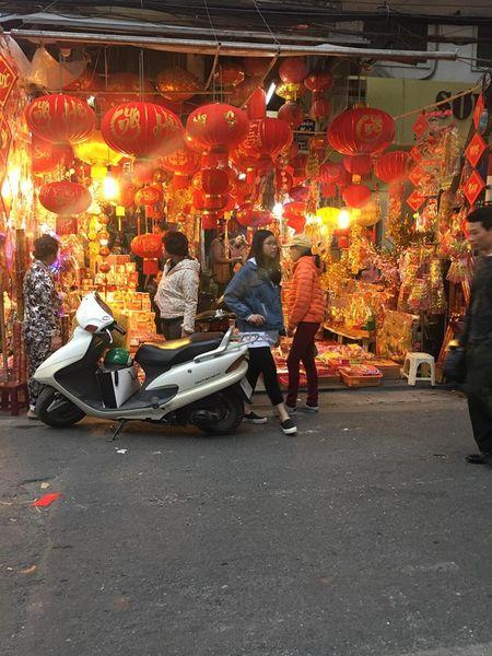 Pho Hang Ma lung linh don Tet Dinh Dau 2017 - Anh 10