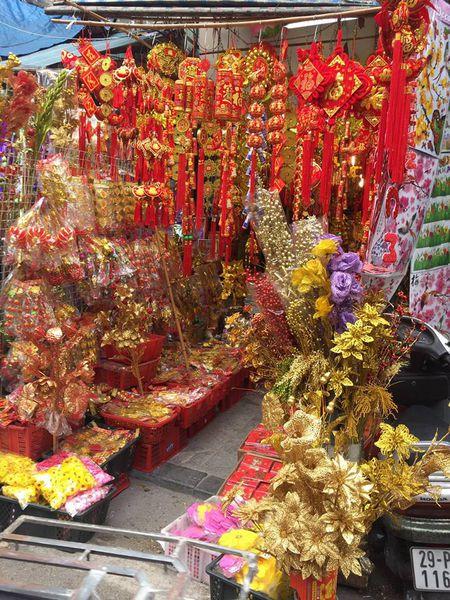 Pho Hang Ma lung linh don Tet Dinh Dau 2017 - Anh 3