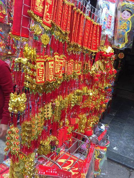 Pho Hang Ma lung linh don Tet Dinh Dau 2017 - Anh 4