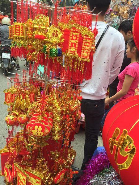 Pho Hang Ma lung linh don Tet Dinh Dau 2017 - Anh 5