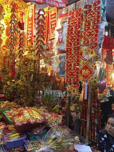 Pho Hang Ma lung linh don Tet Dinh Dau 2017 - Anh 7