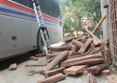2.600 kg go quy duoc cat giau tinh vi tren xe khach bien so nuoc ngoai - Anh 1