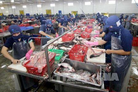 Xuat khau thuy san se dat 7,4 ty USD trong nam 2017 - Anh 1
