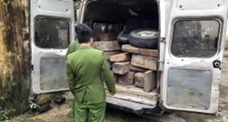 Bat giu xe khach van chuyen 17 phach go trai phep - Anh 1