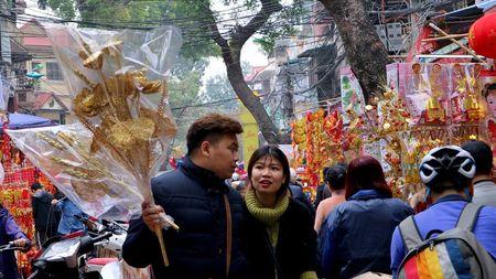 Nguoi Ha Noi hoi ha sam 'nha lau, cay vang' tien Tao quan - Anh 7