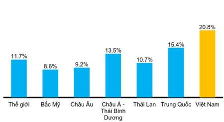 Nha dau tu nuoc ngoai dang nham toi thi truong kho van Viet Nam - Anh 1
