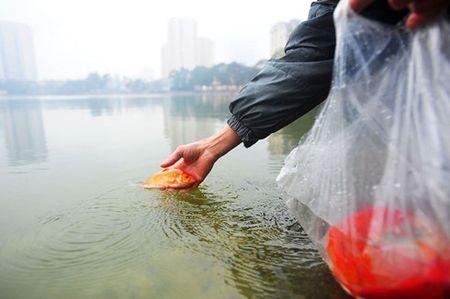 Cung ong Cong ong Tao: Tha ca chep the nao moi dung? - Anh 1