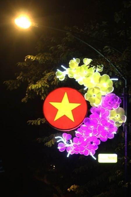 Duong pho Ha Noi dep thanh lich voi den trang tri Tet - Anh 4