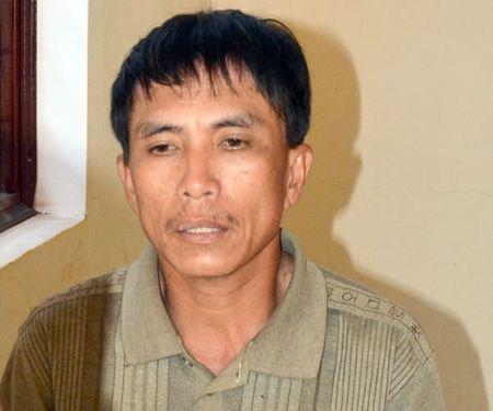 Vu 'lam tac cuop, dot go tang vat' tai Gia Lai: To bao ve BQL rung phong ho khai bao gian doi - Anh 1