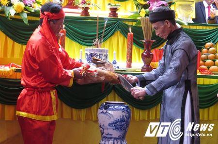 Le hoi 'the khong tham nhung' o Hai Phong vang bong 'quan lon' - Anh 7