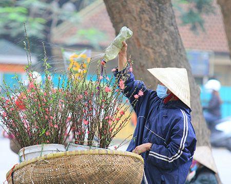 Ram thang Gieng: Dao Nhat Tan cuoi mua xuong pho - Anh 3
