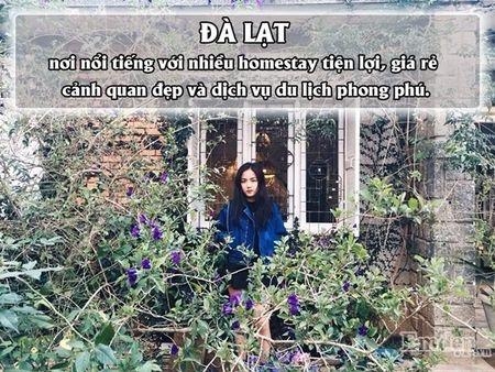 4 diem den o Viet Nam du doan se 'len ngoi' trong nam 2017 - Anh 4