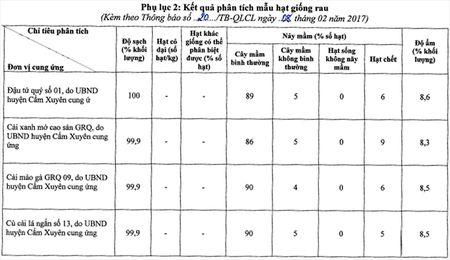 15 giong cay trong ho tro nguoi dan vung lu deu dam bao chat luong - Anh 3