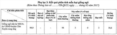 15 giong cay trong ho tro nguoi dan vung lu deu dam bao chat luong - Anh 4